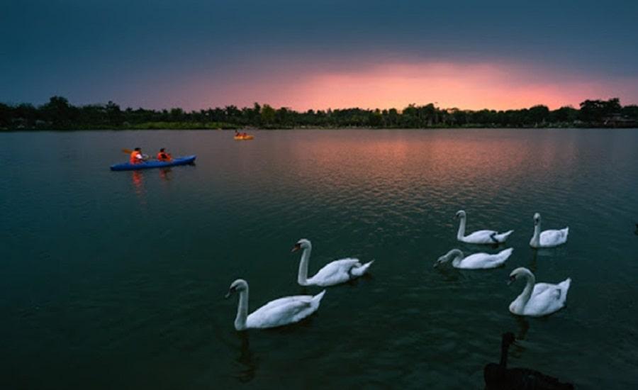 Tiện ích cảnh quan sinh thái Hồ Thiên Nga