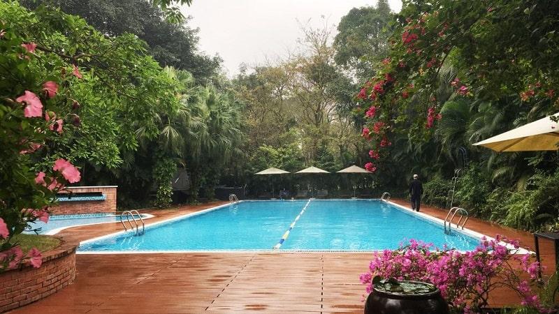 Bể bơi vườn Tùng Ecopark