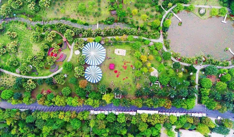 Công viên mua Xuân Ecopark là địa điểm lý tưởng để cắm trại
