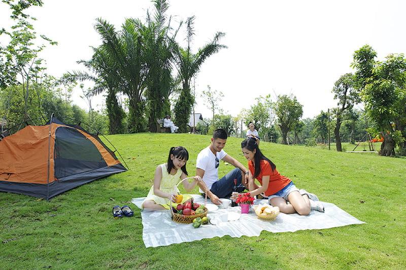 Cắm trại ở công viên mùa Hạ