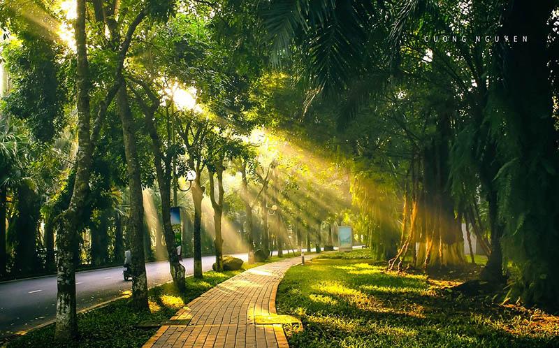 Hòa mình vào thiên nhiên xanh mát tại Ecopark