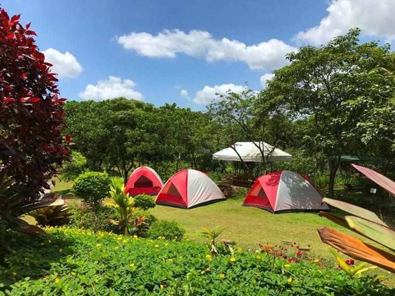 Cắm trại tại Ecopark