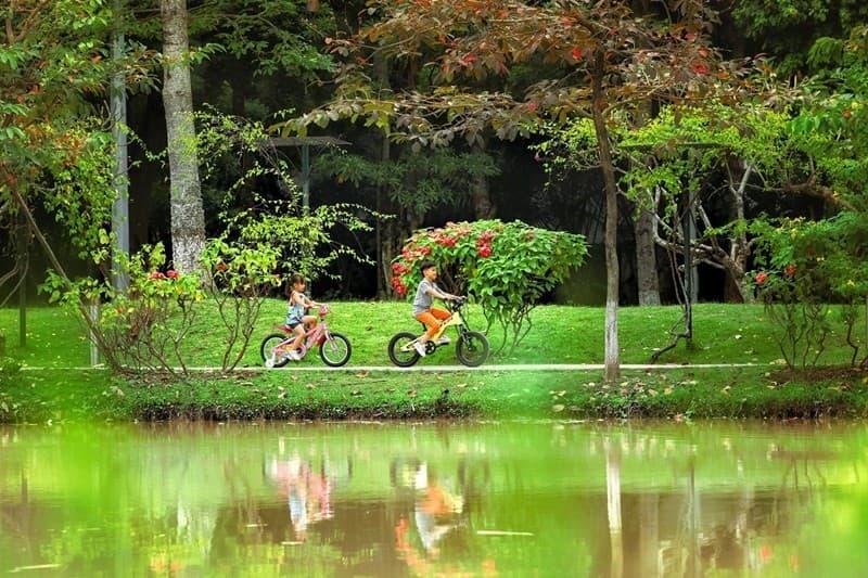 Công viên mùa hạ Ecopark