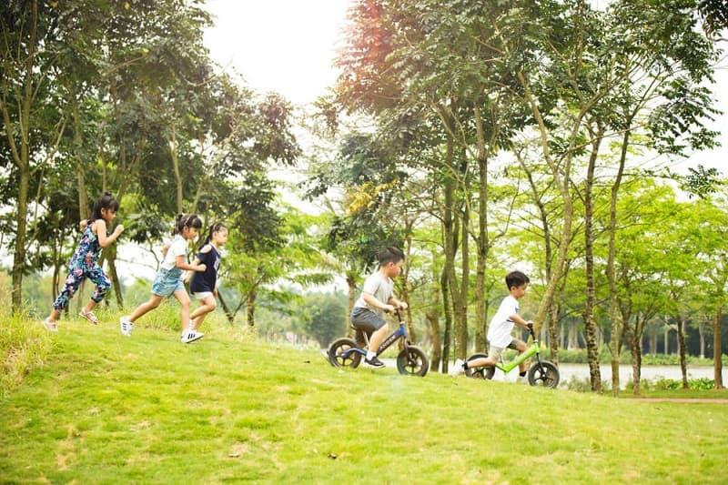 Chơi đùa trên bãi cỏ xanh công viên mùa hạ Ecopark