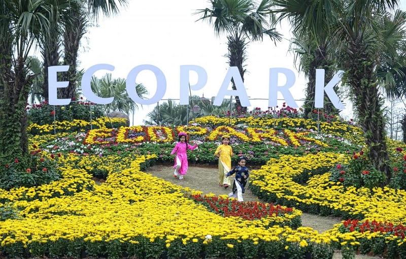 Đồi hoa công viên mùa Xuân Ecopark