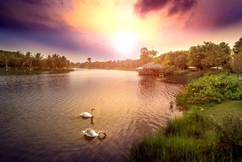 Sự Mãn Nguyện Của Những Gia Đình Khi Sống Ven Đô - Ecopark
