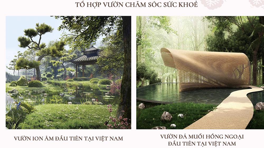to-hop-vuon-cham-soc-suc-khoe